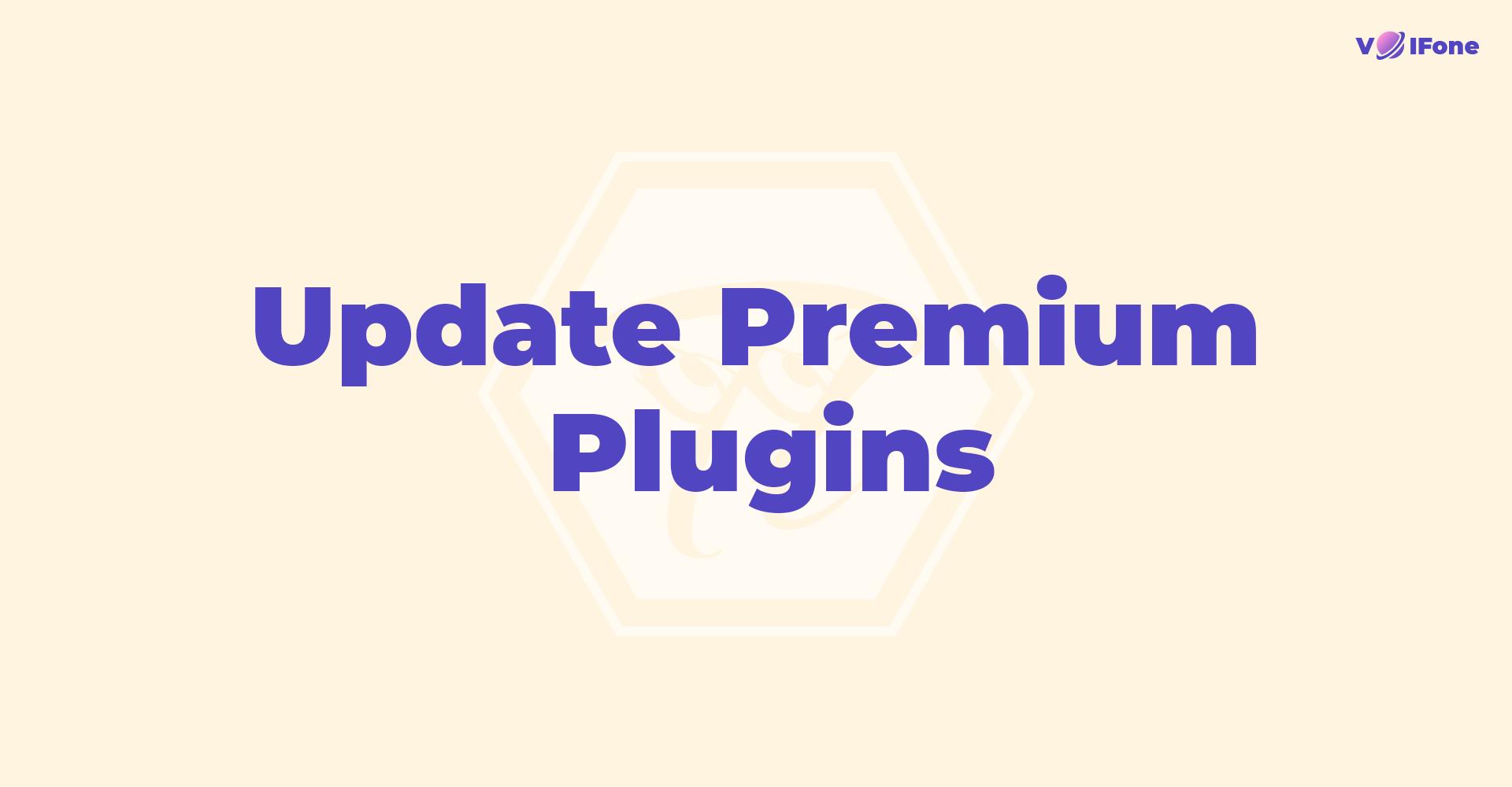 update_plugin